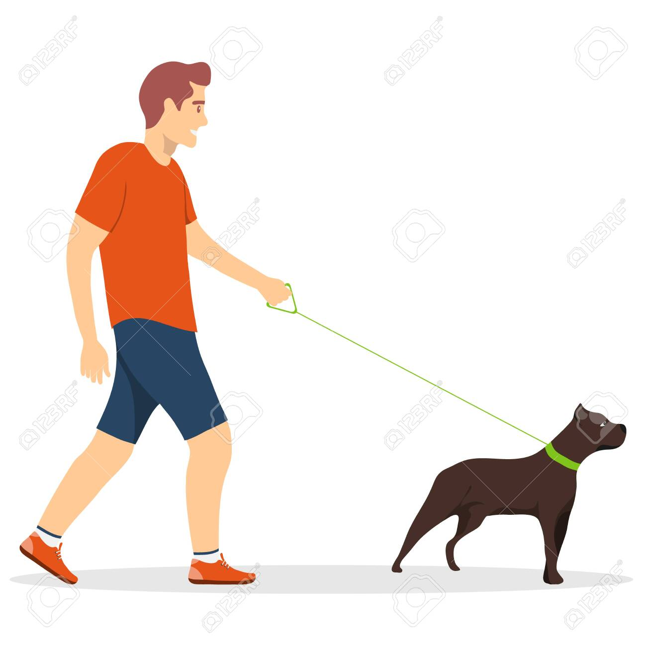 Walk the dogs. A man walking a dog on a leash isolated on a white background. Vector illustration. Vector. - 147874414