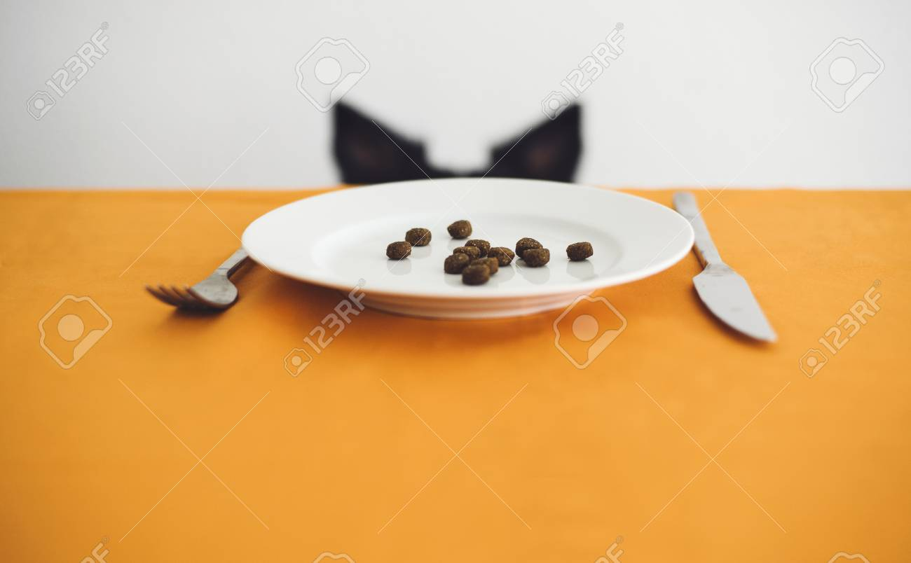 Dog Ears behind the Table  On the Table Is a Plate with Dog Food