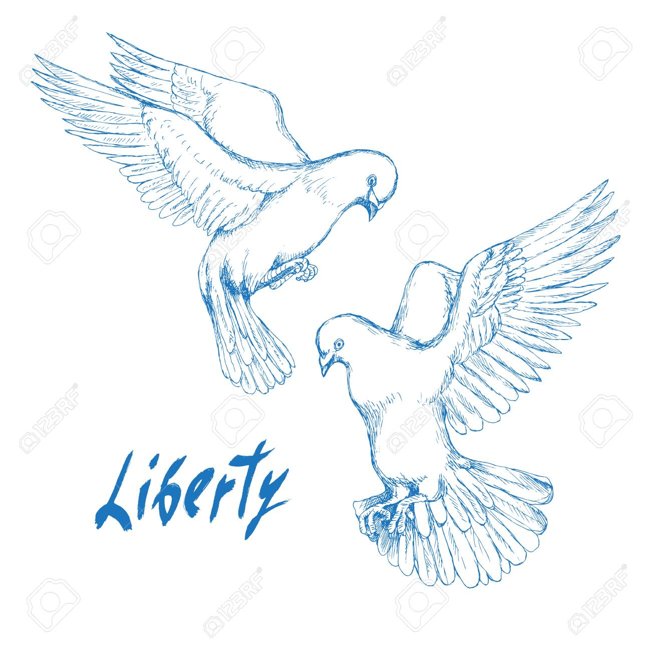 Dove Bird Symbol Of Peace And Happiness Liberty Hand Sketch