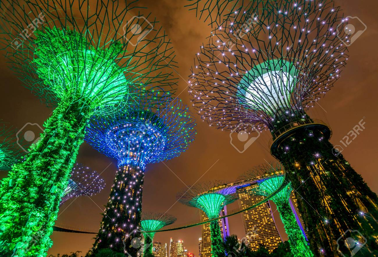Illuminated Supertrees In Gardens By The Bay At Night, Singapore ...