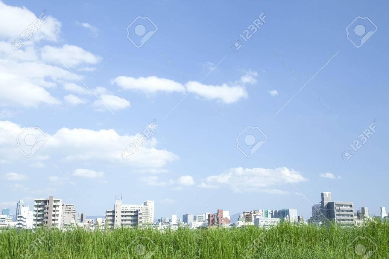 Grassland and city - 46565083