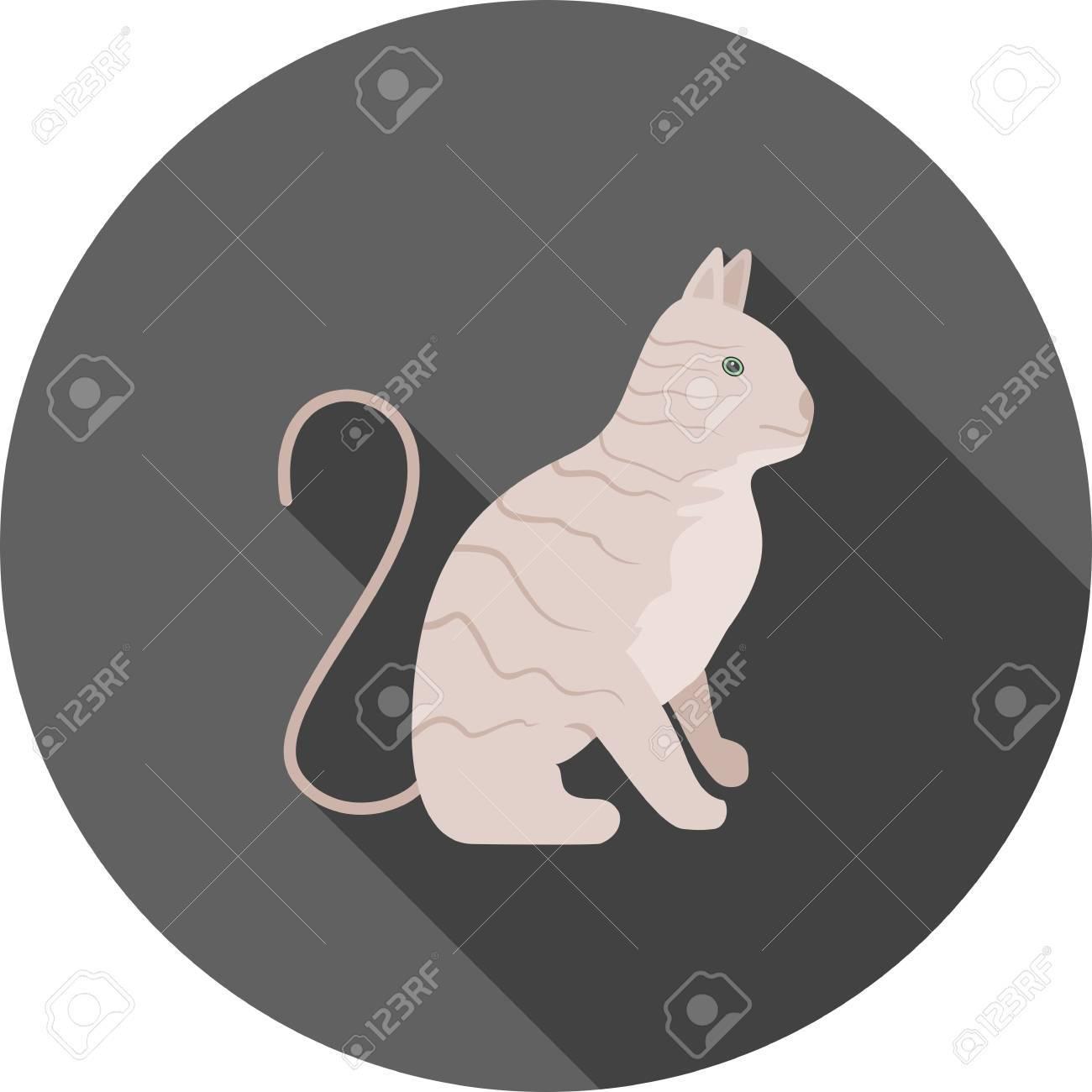 la figa nera gatto cartone animato sesso in auto