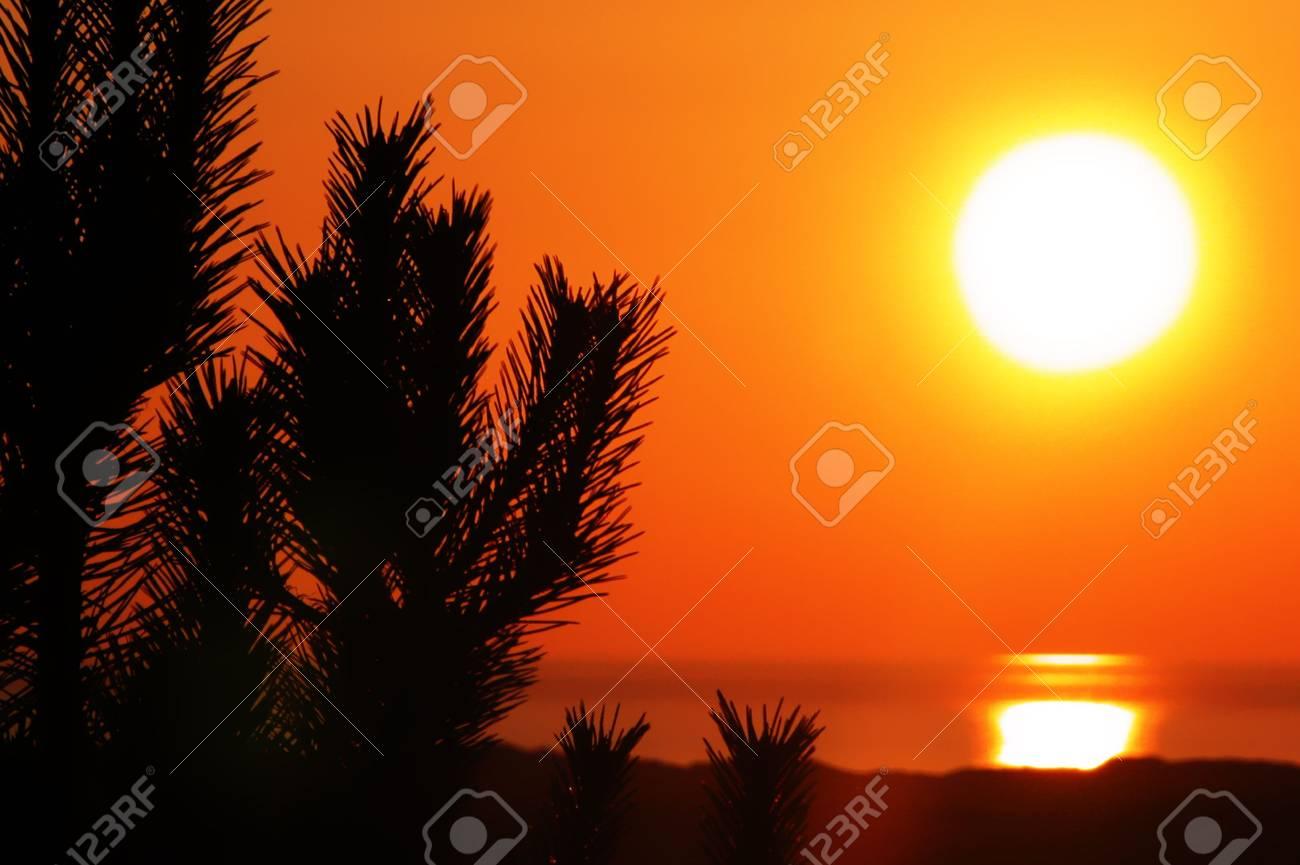 orange sunset Stock Photo - 968892