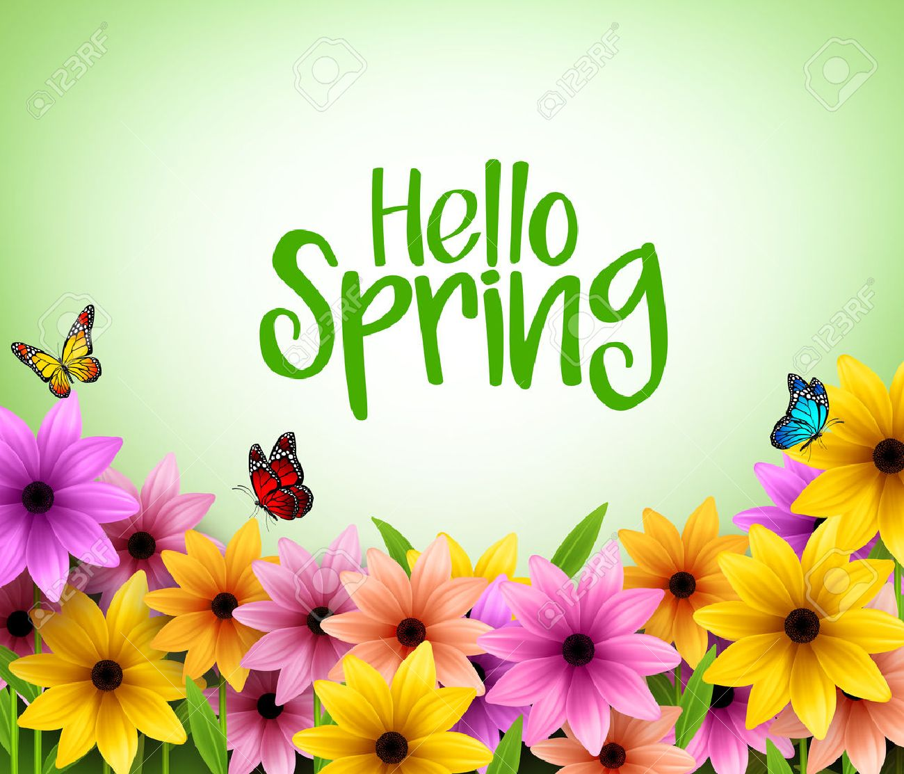 Colorful Flowers Background in 3D Realistic Vector for Spring Season with Space for Message. Vector Illustration - 51701025