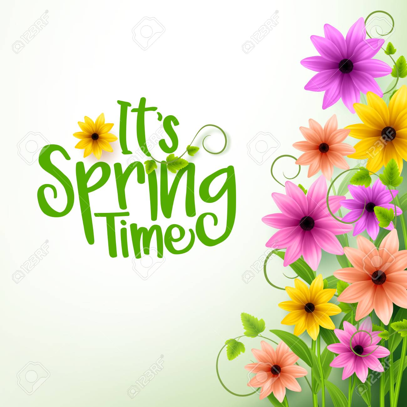 Vector Spring Time Text in White Background with Realistic 3D Colorful Flowers and Vines. Vector Illustration - 51870874
