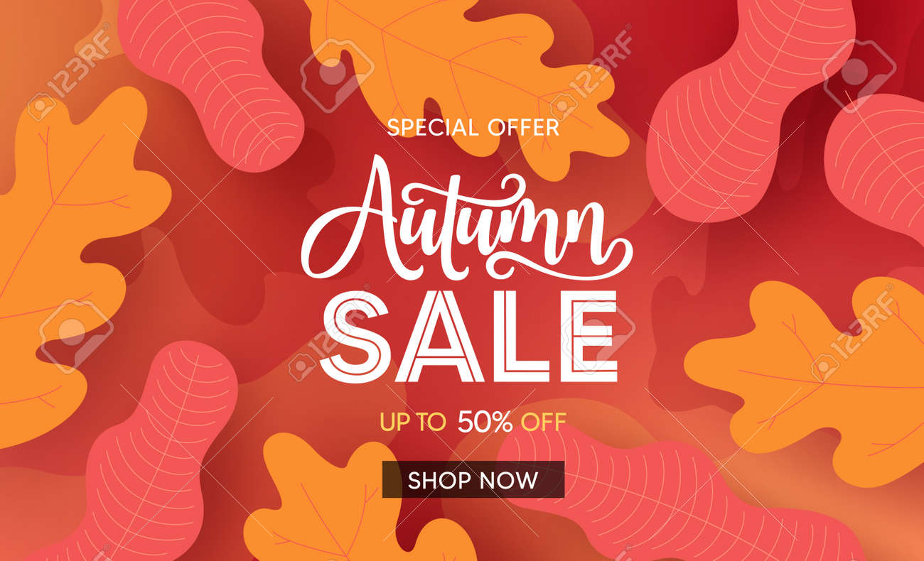 Fall season sale vector banner background. Autumn seasonal sale text with colorful maple and oak leaves for marketing promotion design. Vector illustration. - 172467296