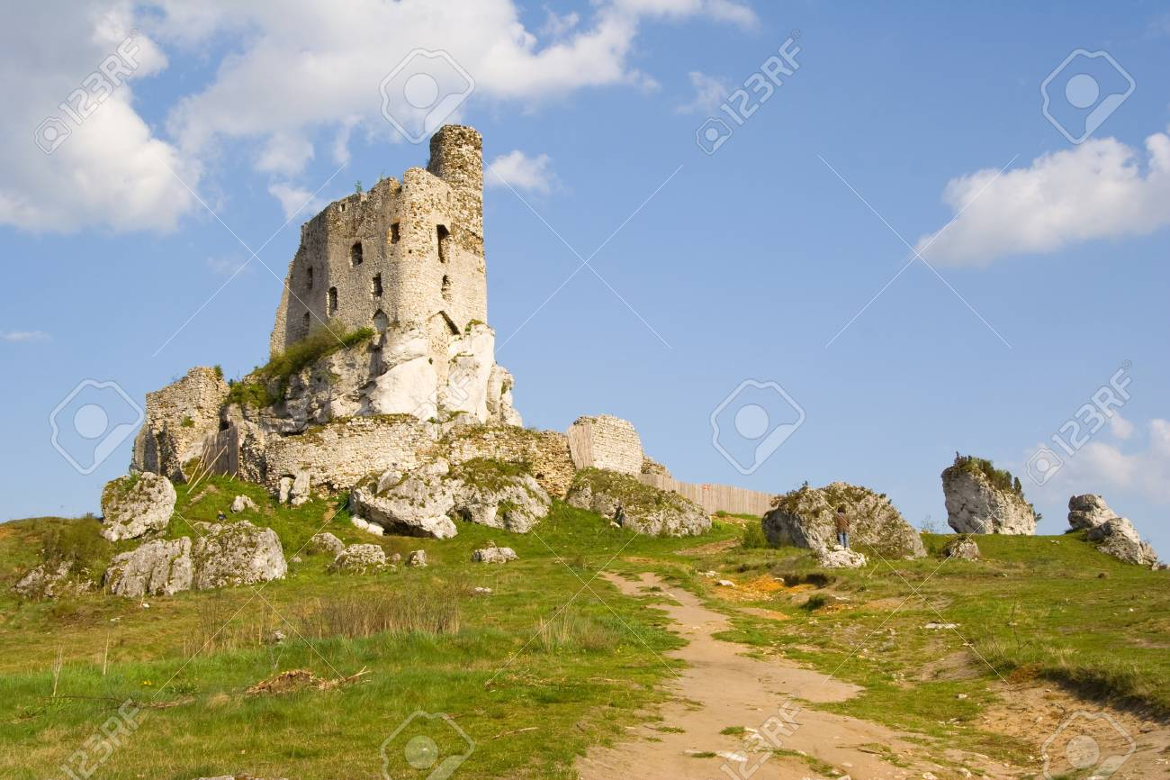 Ruins of medieval castle Mirow in Poland Stock Photo - 16870349