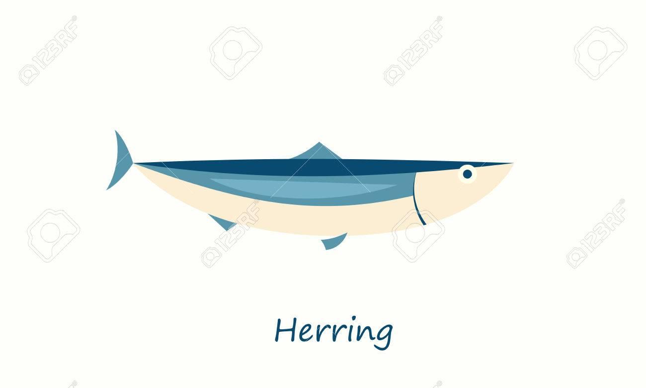 Herring fish isolated on white. vector cartoon image - 73032627