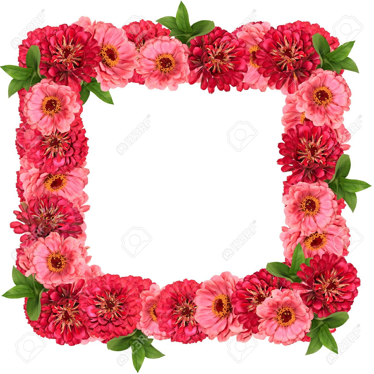 Square Frame With Red And Pink Flowers Isolated On White Background