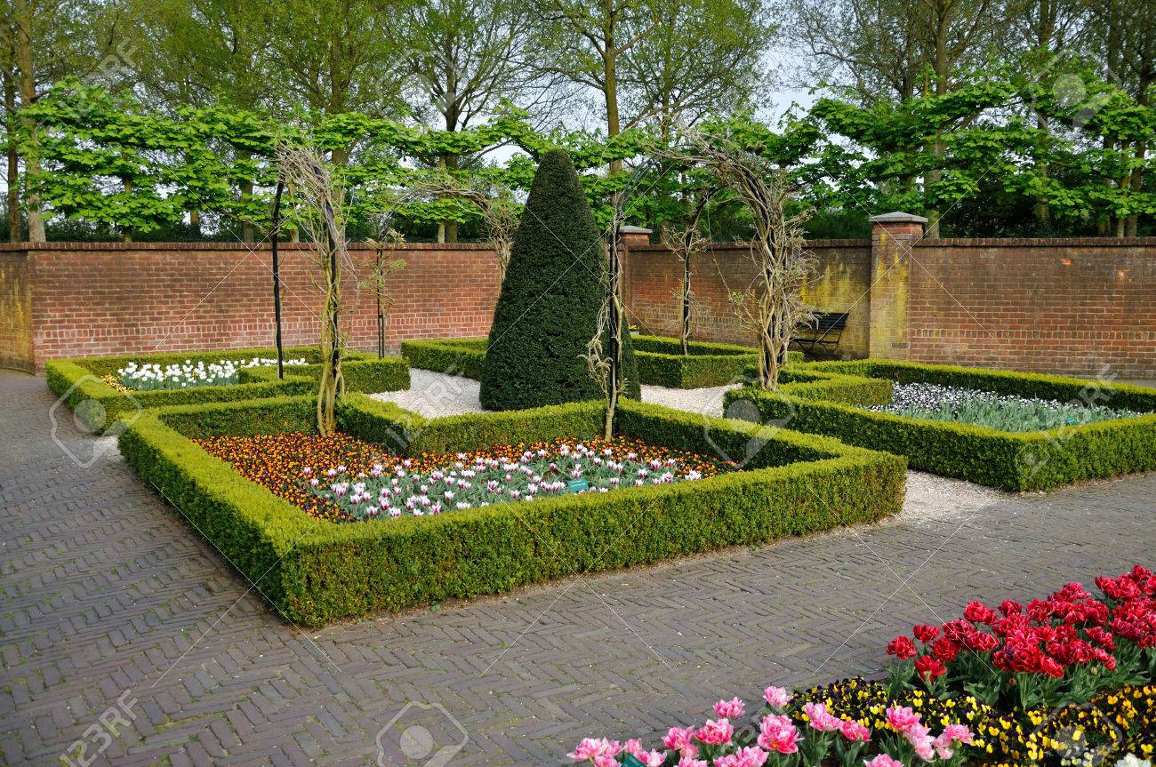 Garden With Small Bushes White Orange And Red Tulips And Brick
