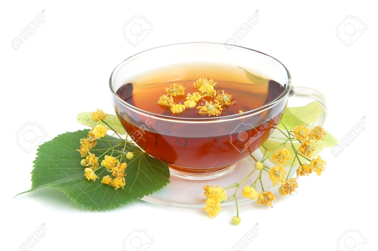 Linden tea with fresh linden flowers on a white background stock linden tea with fresh linden flowers on a white background stock photo 10346324 mightylinksfo