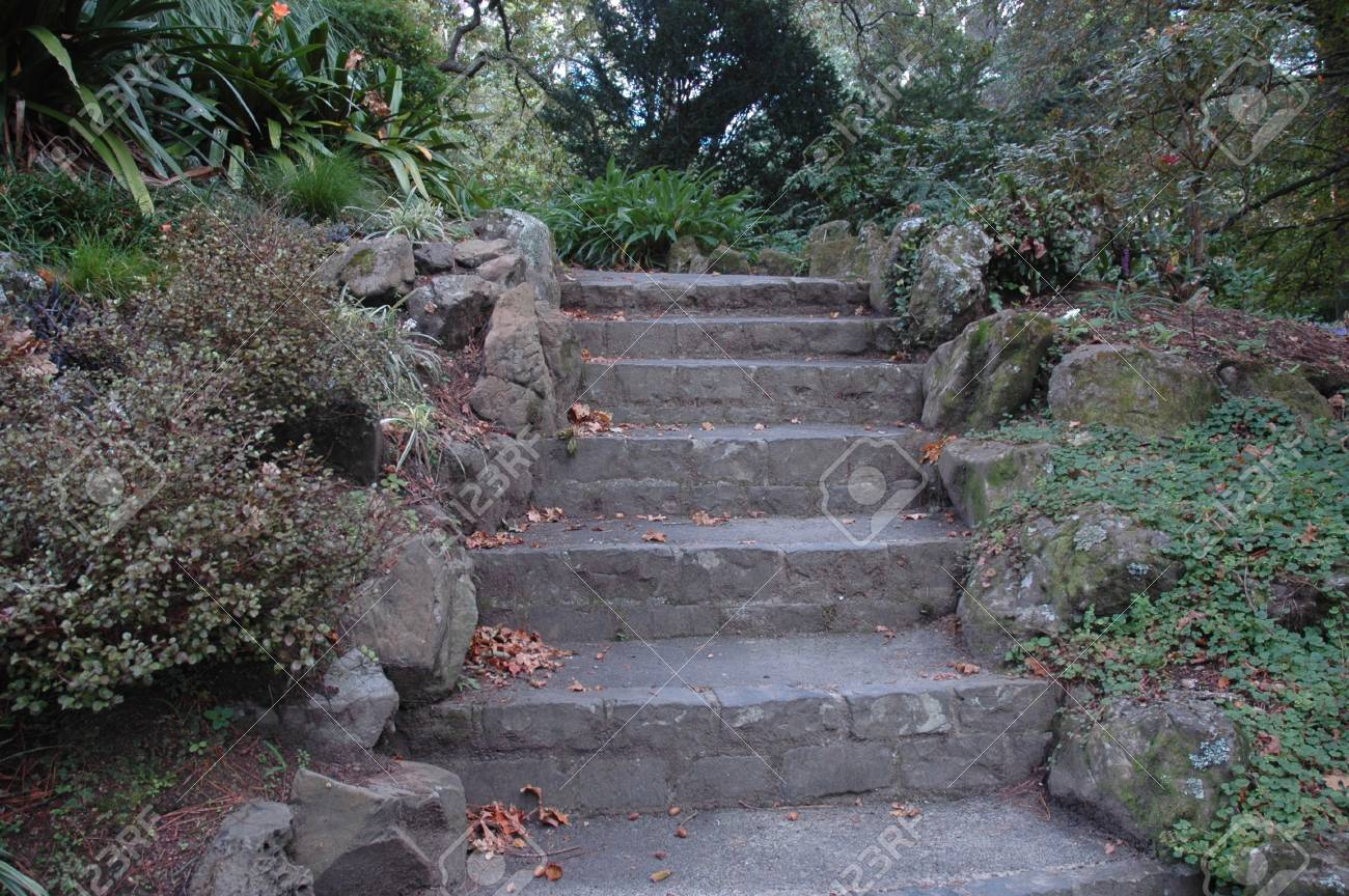 A flight of stone stairs bordered by rocks. They lead through a garden of bushes, trees, ground cover and some flowers. Stock Photo - 90713920