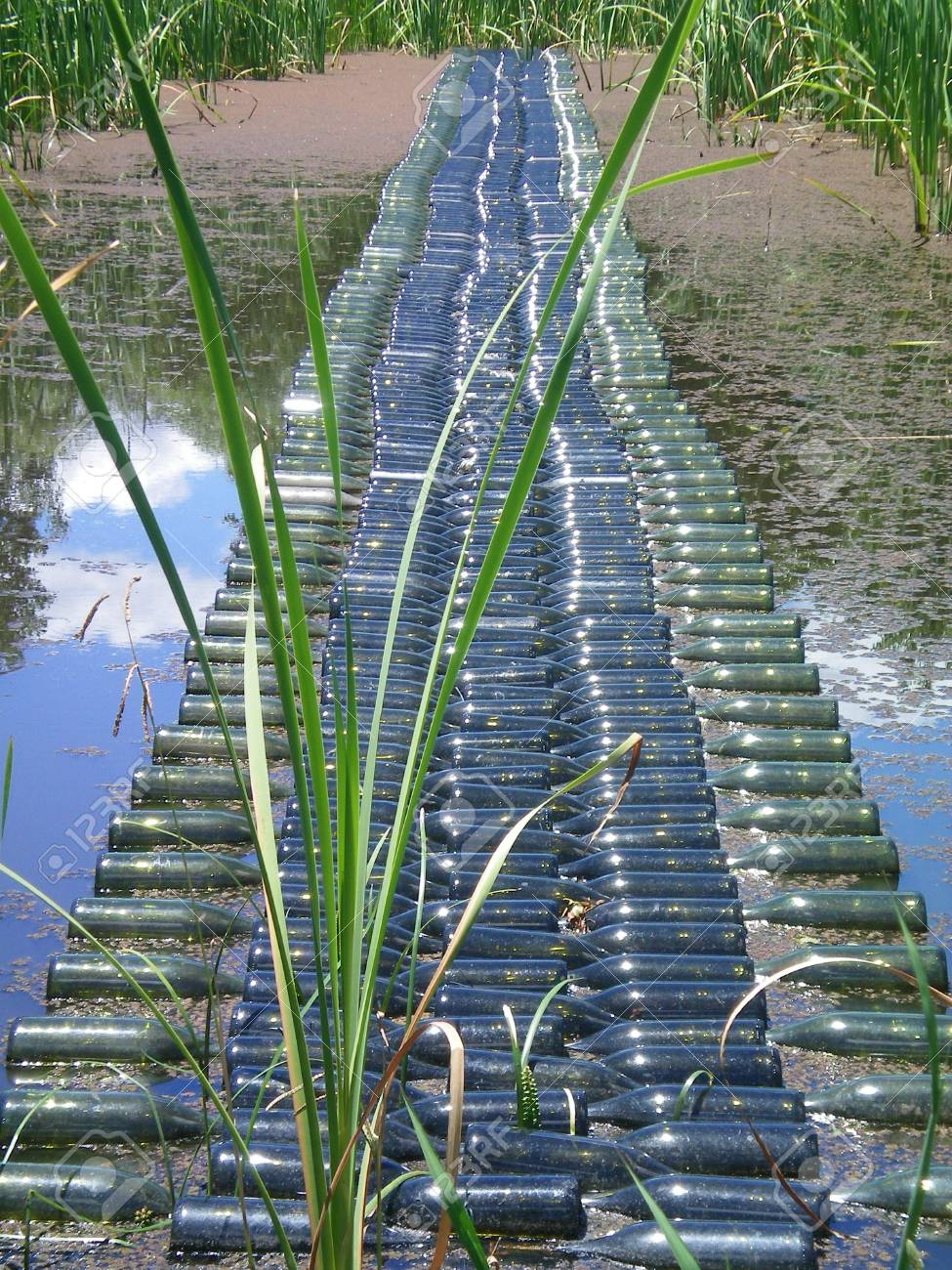 A bridge made of empty wine bottles lies across a pond. The pond is filled with reeds. White clouds are reflected in the water. Stock Photo - 92154529