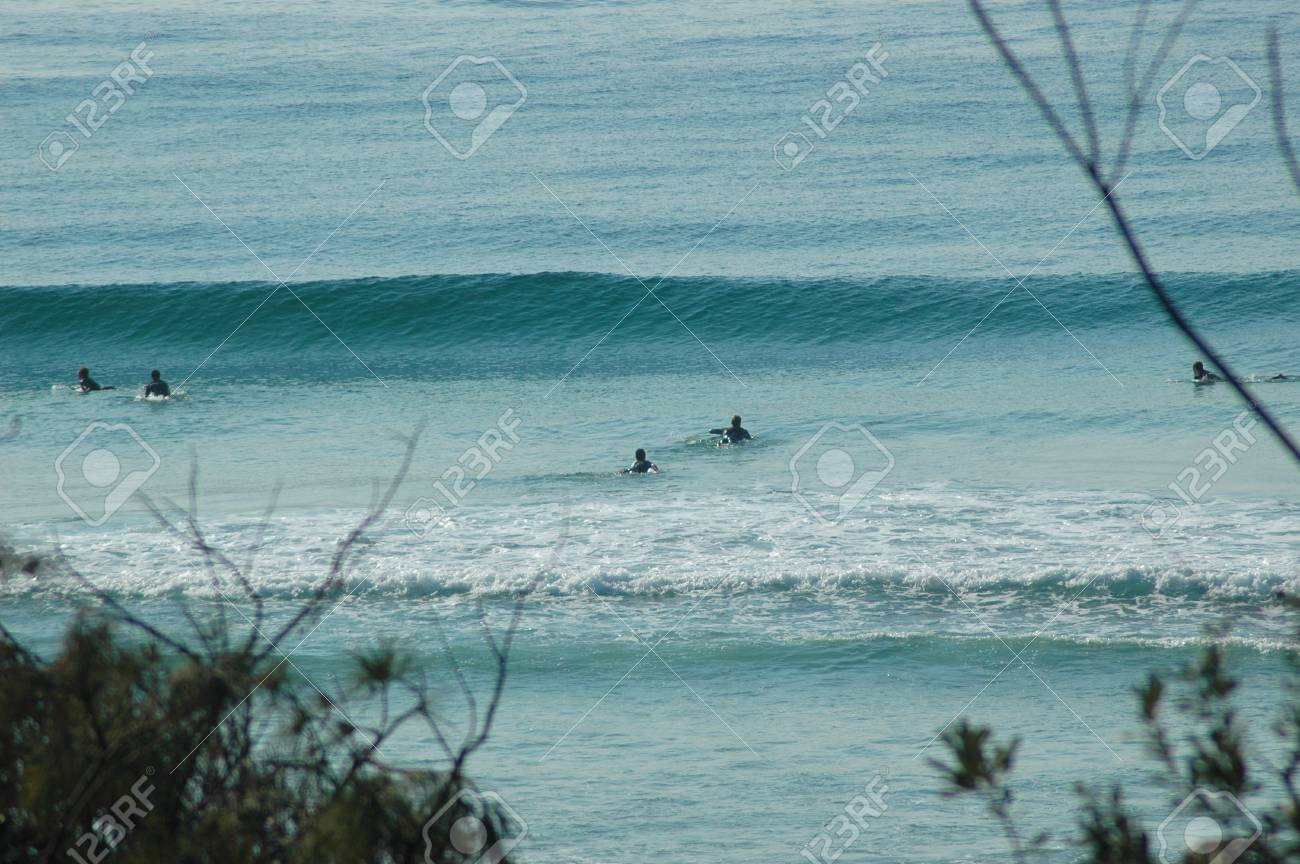 A group of surfers paddling to catch the next wave. The ocean is blue, and a large wave is forming. The photograph is framed by the branches of trees. Stock Photo - 92613089