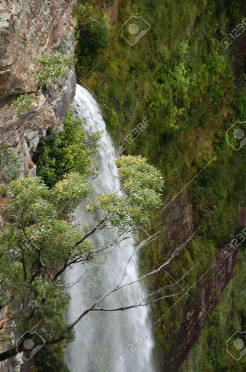 A waterfall in the Blue Mountains, Australia. It is white against the surrounded green eucalyptus trees and scrub. The cliffs are of sandstone. - 152723803