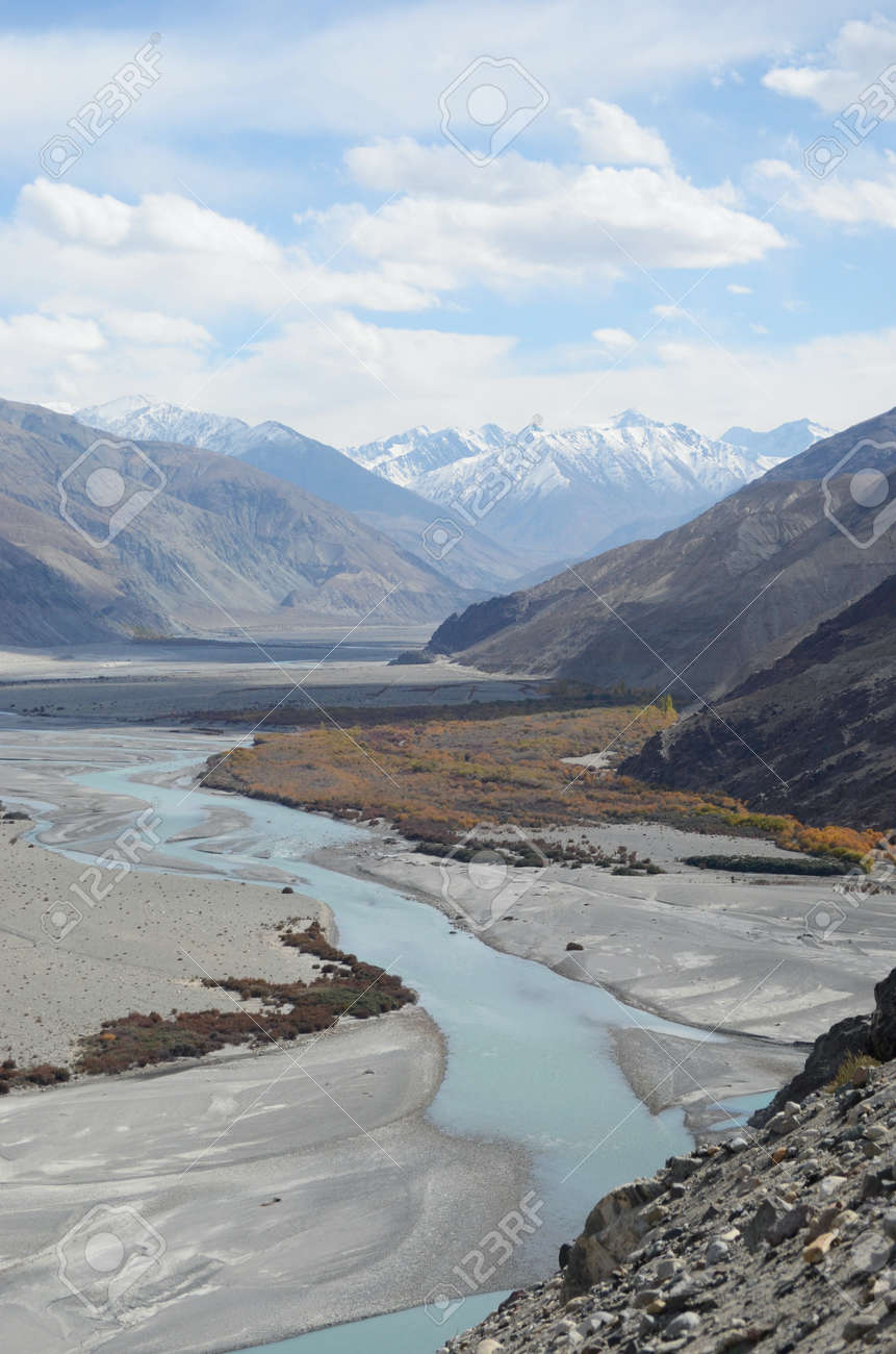 A river with tributaries runs through a plain in Ladakh, India. It is filled with mineral rich soil. Some trees are growing neaar the water. Snow covered mountains, part of the Western Himalayas, are in the distance. - 155137316