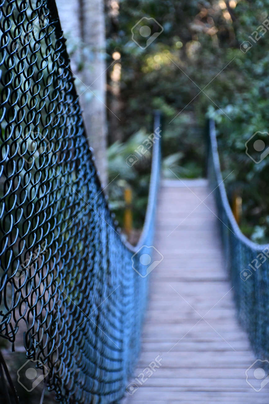 A wooden suspension footbridge has dark metal mesh railings. The focus is on the foreground, with the end of the bridge leading into a forest out of focus. - 164049709