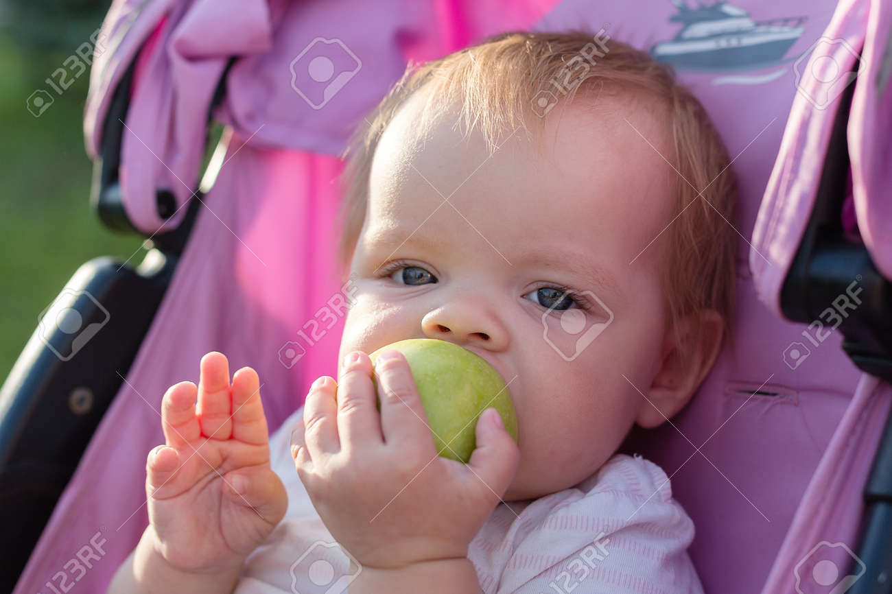 A small blonde child is sitting in a baby carriage and eating an apple. - 171540728
