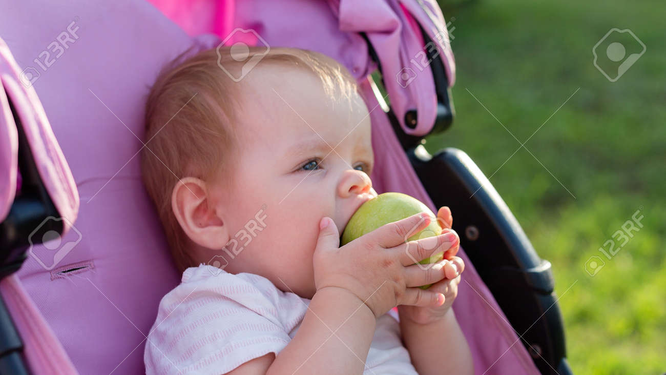 A small blonde child sitting in a baby carriage and eating an apple. - 171540745
