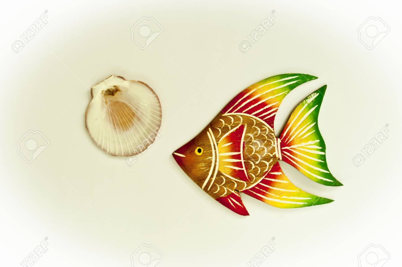 Texture fish and shell arranged by concepts Stock Photo - 17870188
