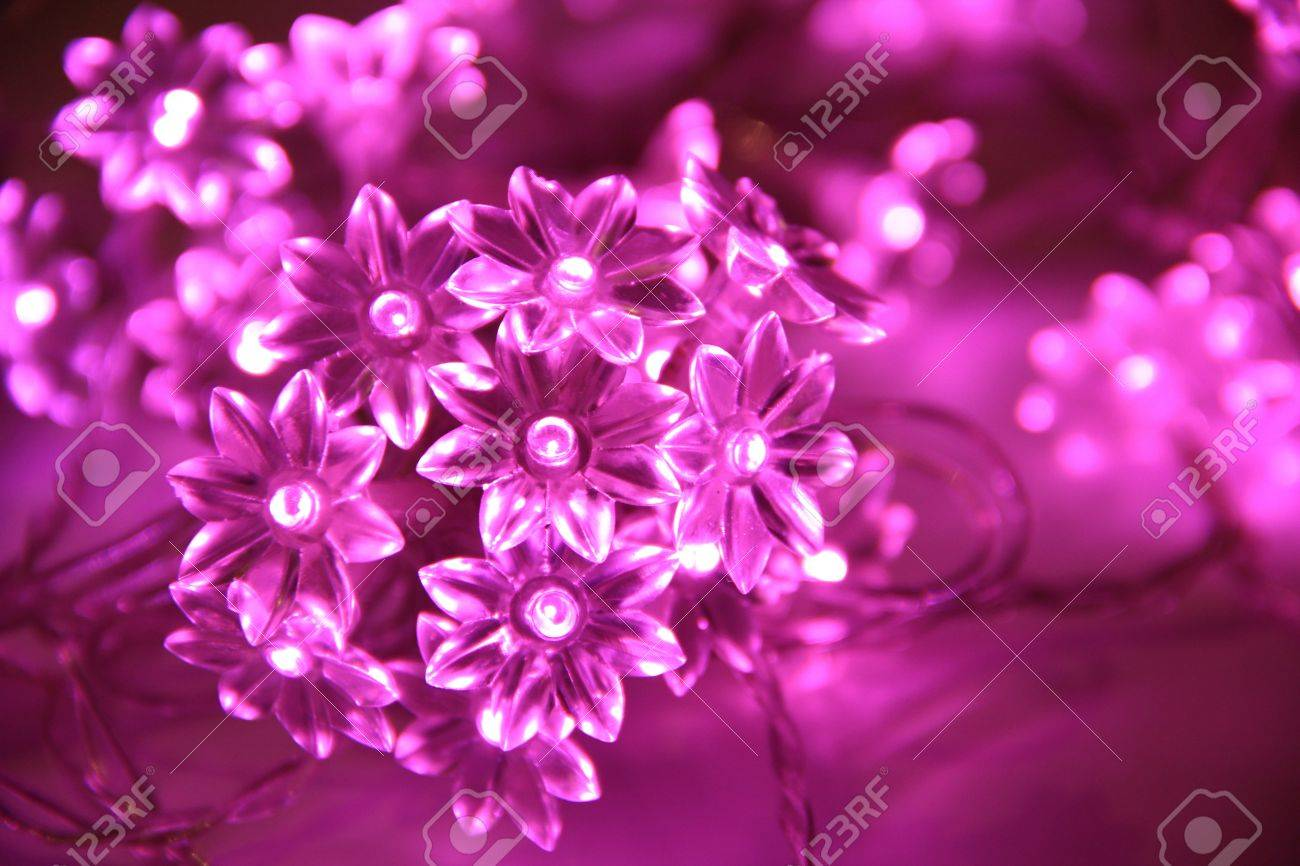 Pink Fairy Lights Stock Photo Picture And Royalty Free Image Image
