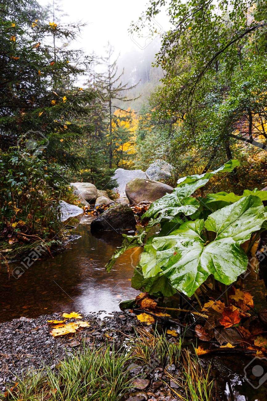 The Harz is the highest mountain range in Northern Germany and