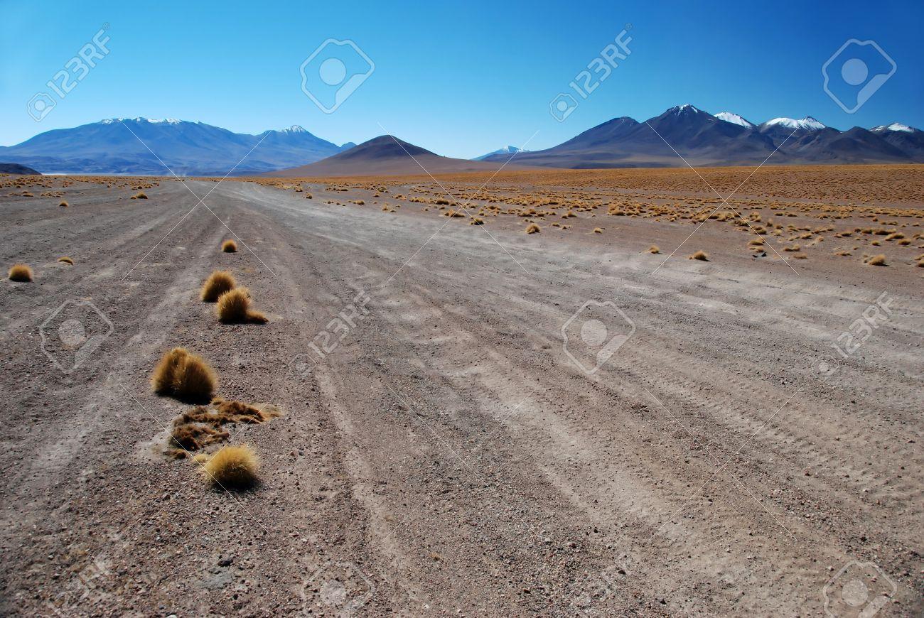 Roads in the desert of Bolivia Stock Photo - 11048085