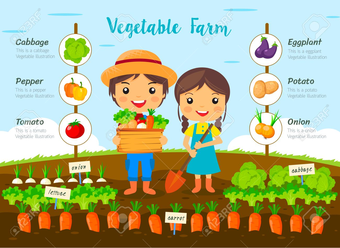 Vegetable garden graphic - Vector Vegetable Garden Farm Farmers Harvest On Farm Cartoon Characters Vector Design Info Graphic