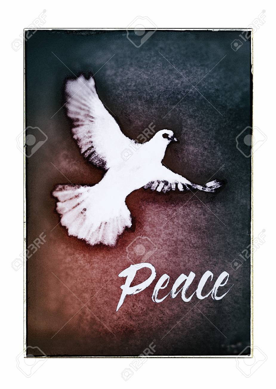 Dove Christmas Card With The Word Peace In A Contemporary Brush
