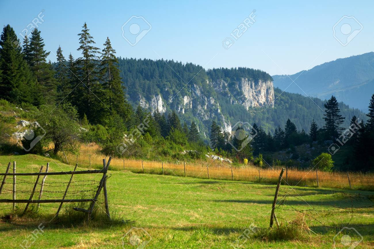 Summer landscape from the Rhodope mountain in Bulgaria Stock Photo - 6945464