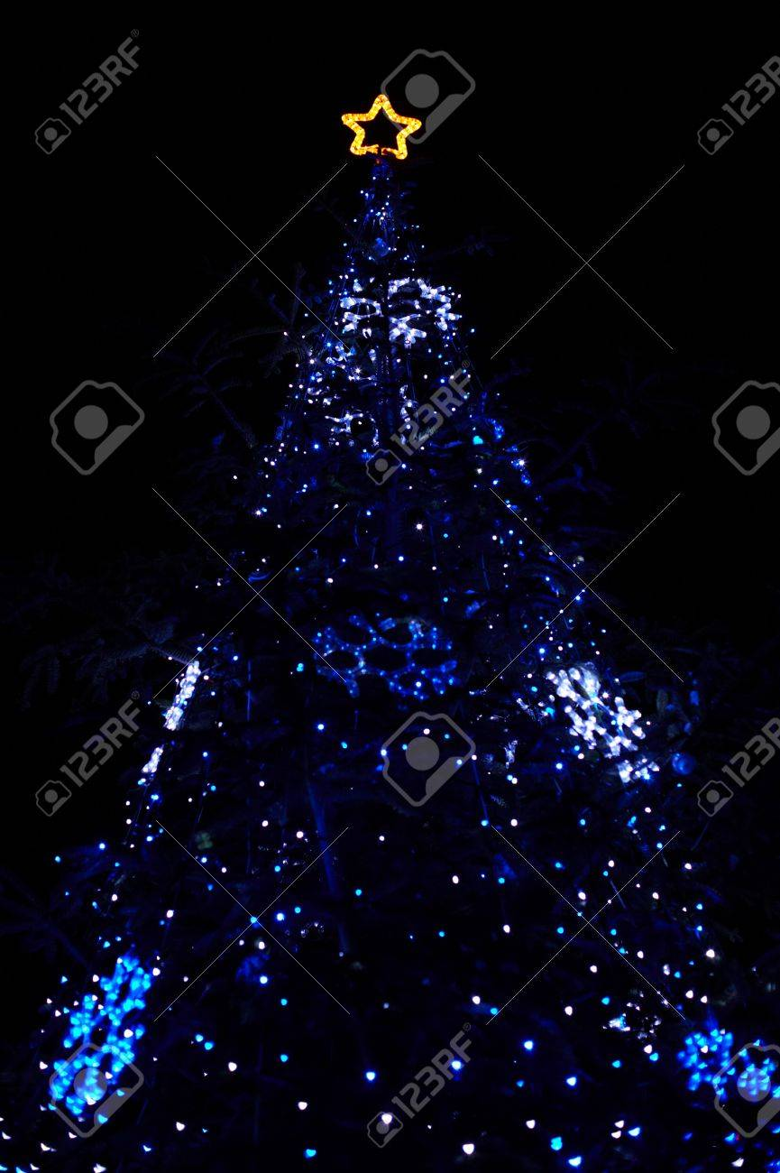 Real Christmas Tree With Blue Lights And Star At The Top Stock Photo    8017211