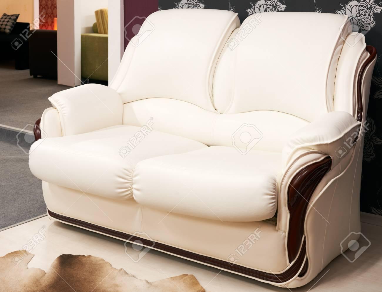 Doppel Sessel Modernen Marktführer Bedeckten Möbeln Lizenzfreie