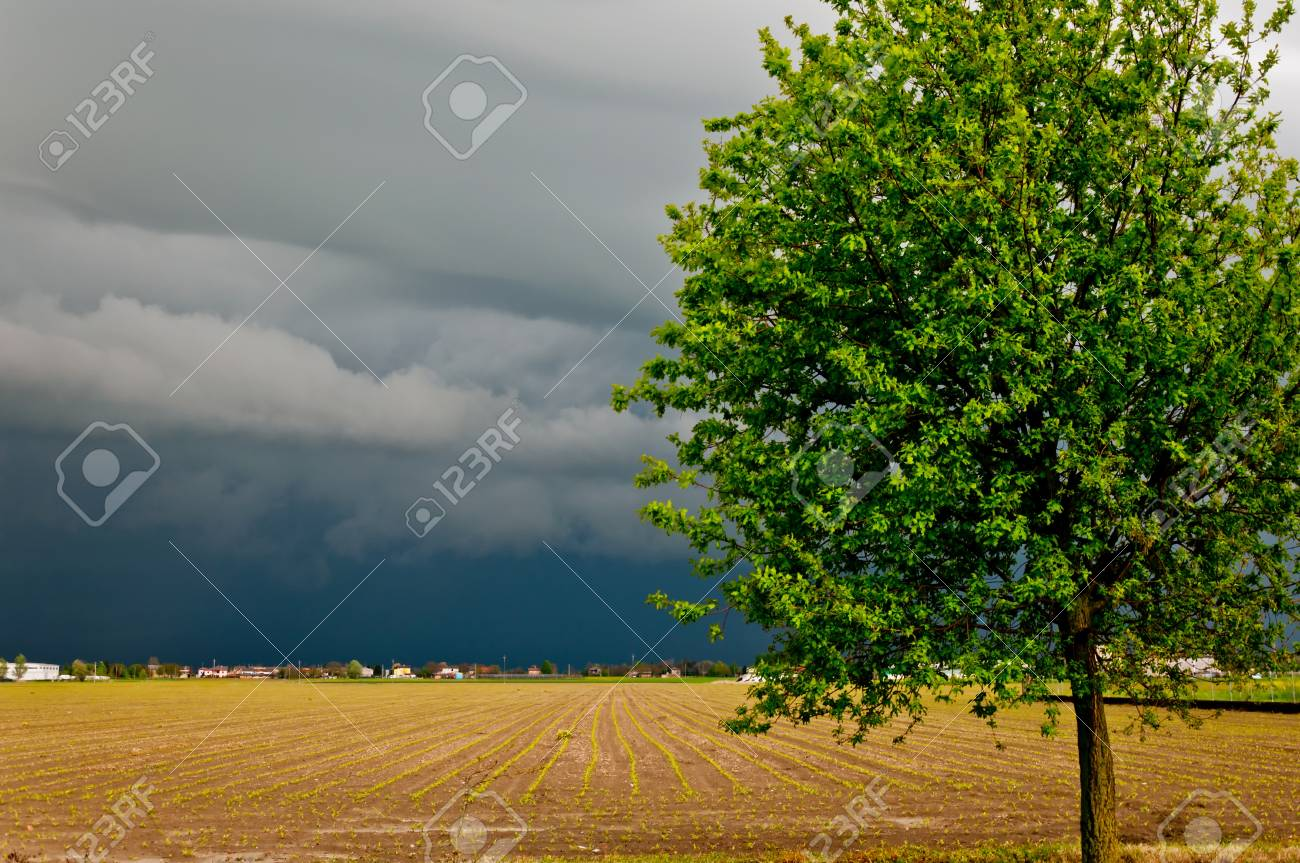 dramatic landscape with arriving storm in Po valley, Emilia Stock Photo - 13854656