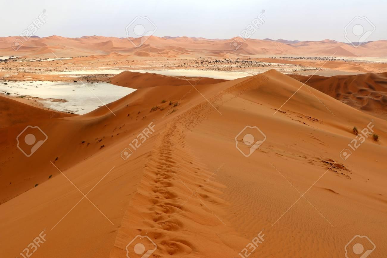 Big Daddy Sand Dune Sossusvlei Namibia Africa