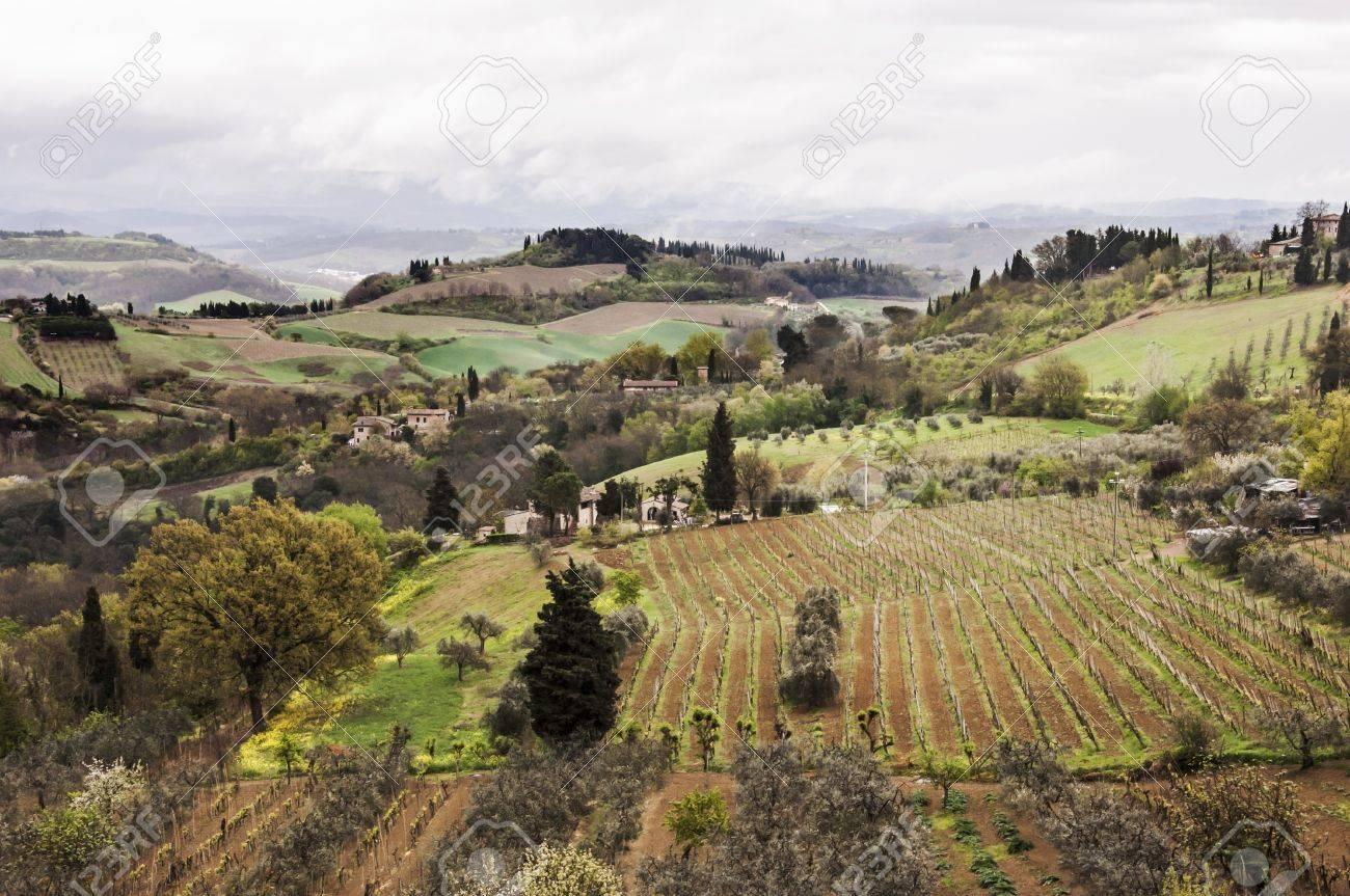 farmland and countryside in Chianti, Tuscany, Italy Stock Photo - 16458079