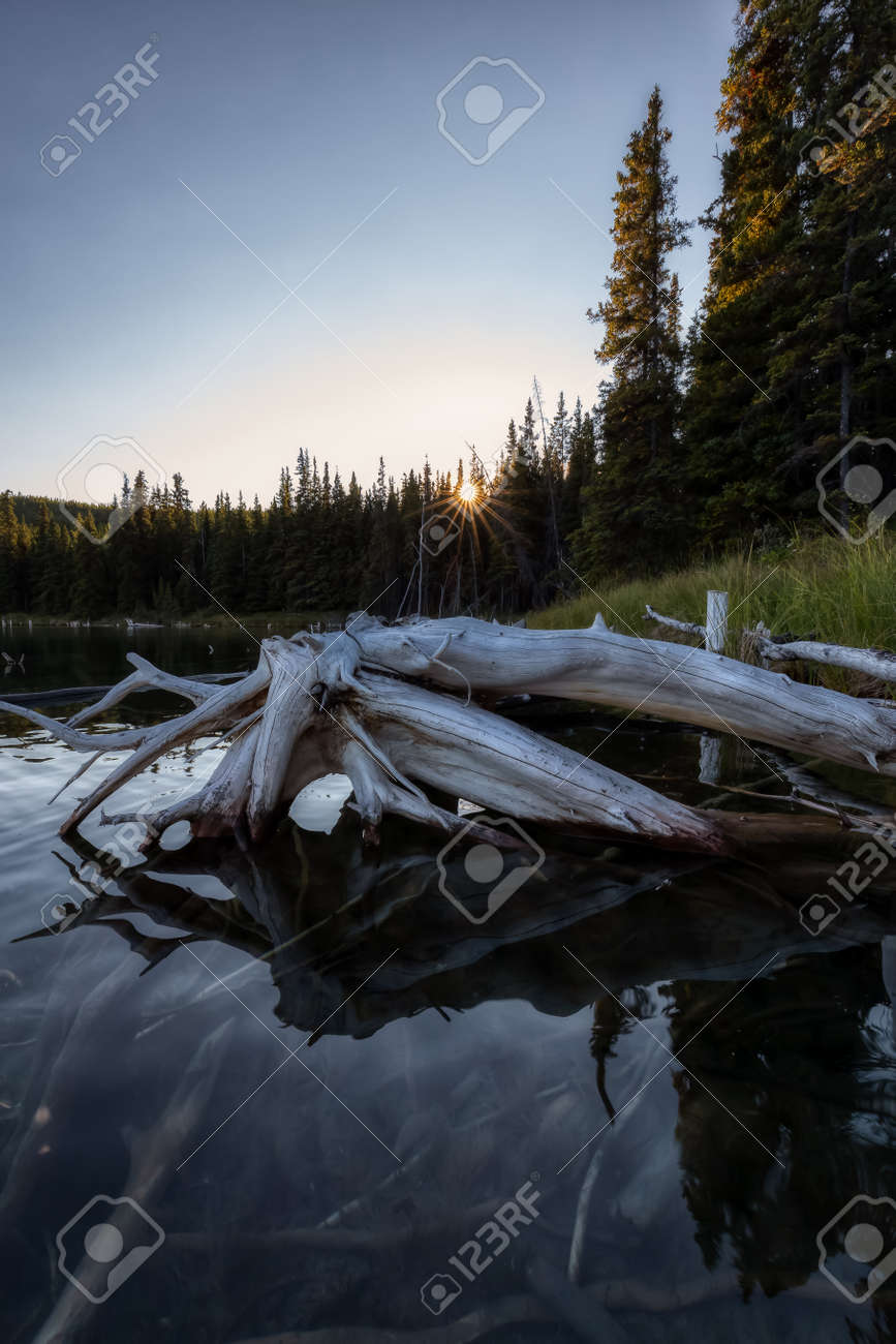 Beautiful Scenery By The Lake In Canadian Nature Moody Sunset Stock Photo Picture And Royalty Free Image Image 158255416