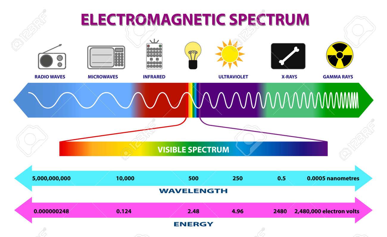 set of electromagnetic spectrum diagram or radio waves spectrum or ultraviolet light diagram. eps 10 vector, easy to modify - 167195378