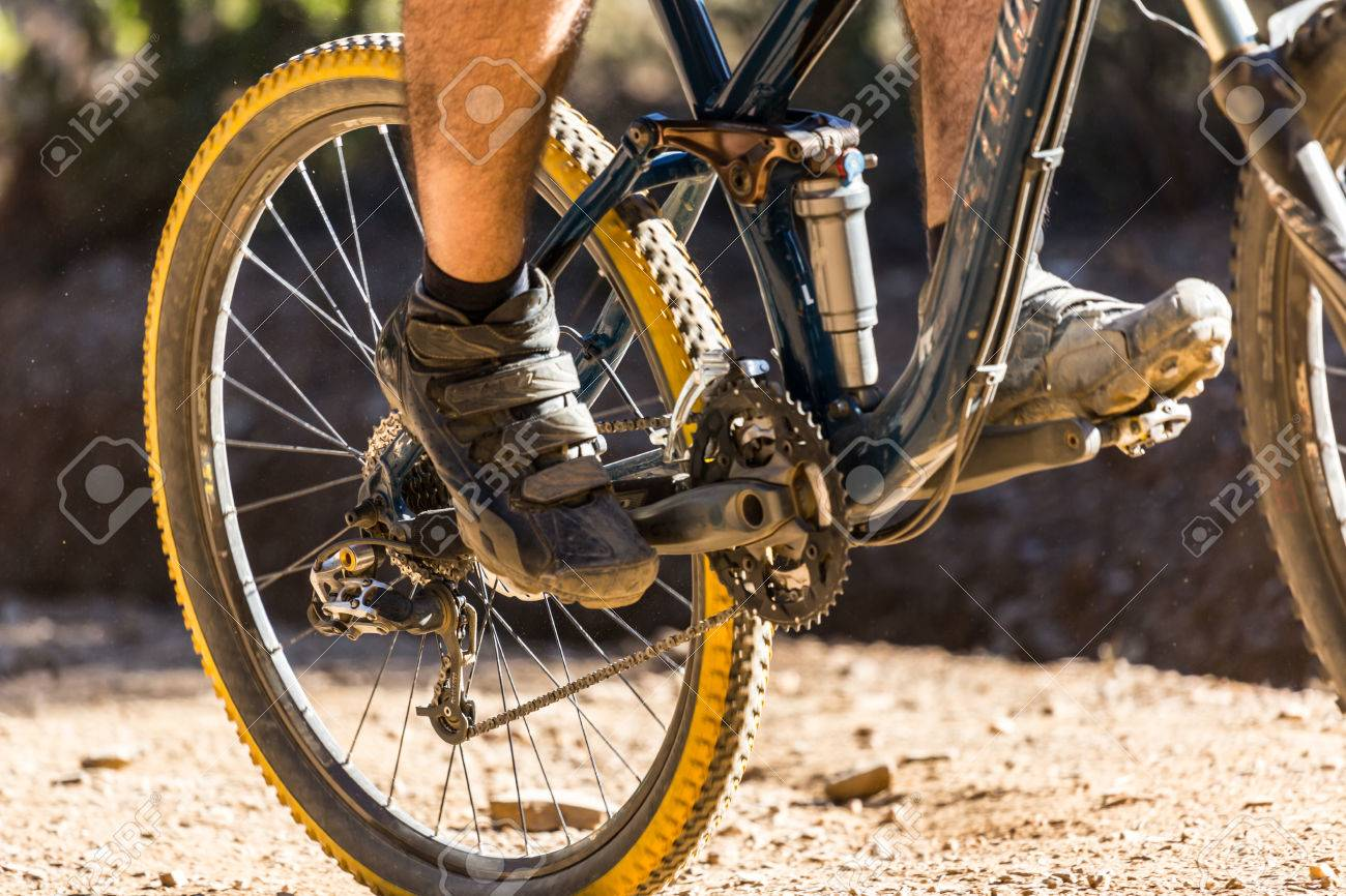 Downhill mountain bike on a forest path - 22840792