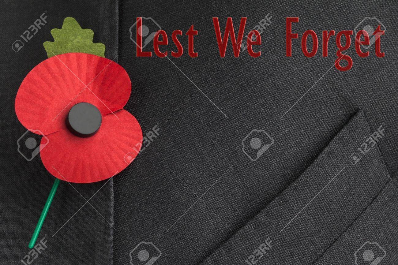 poppy on jacket lapel for poppy day or remembrance day stock