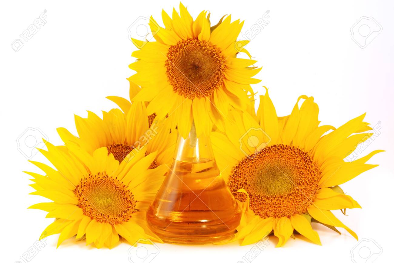 Sunflowers and  glass pitcher with sunflower oil   isolated on white background Stock Photo - 5904337