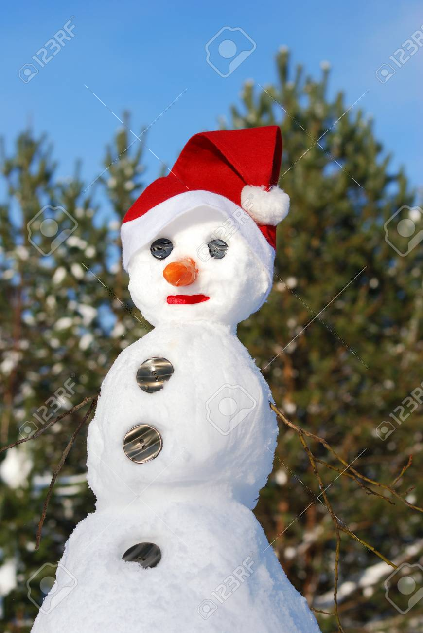 Winter scene with  snowman on  forest background Stock Photo - 7993104