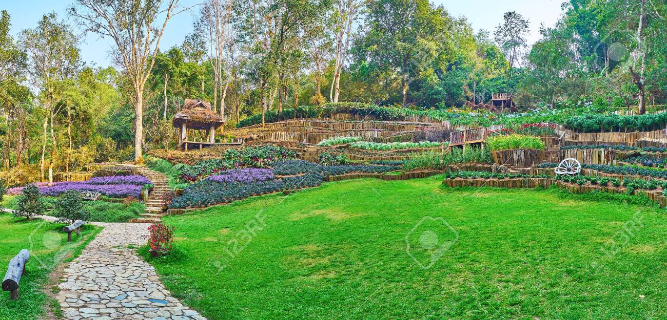 Walk The Hilly Alley Through The Green Lawn With Bright Terrace