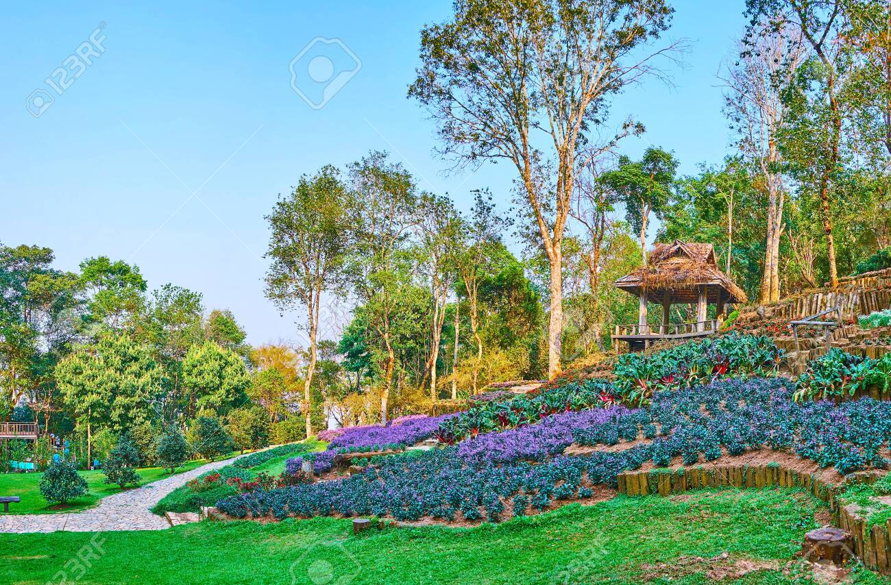 The Topiary Garden With Ornamental Flower Beds Of Pentsemon And Stock Photo Picture And Royalty Free Image Image 127429348