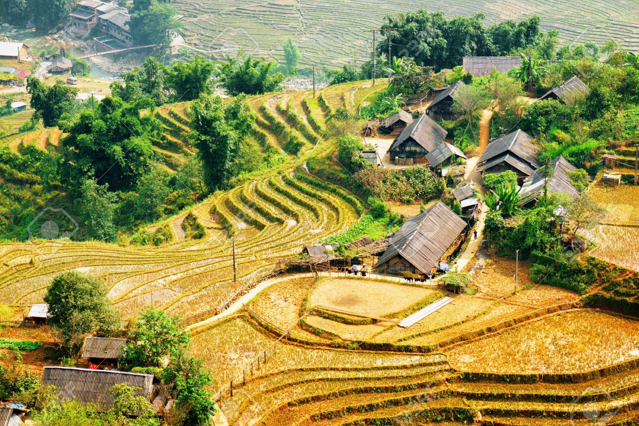 Vista Escénica De Las Terrazas De Arroz Y Techos De Las Casas De Pueblo Entre Los árboles Verdes En La Parte Alta De Sapa Distrito Provincia De Lao