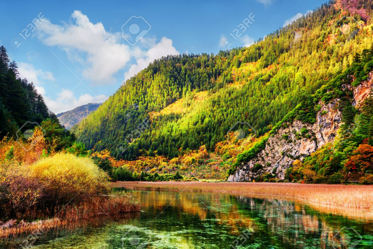 Beautiful View Of Scenic River With Crystal Water Among Colorful