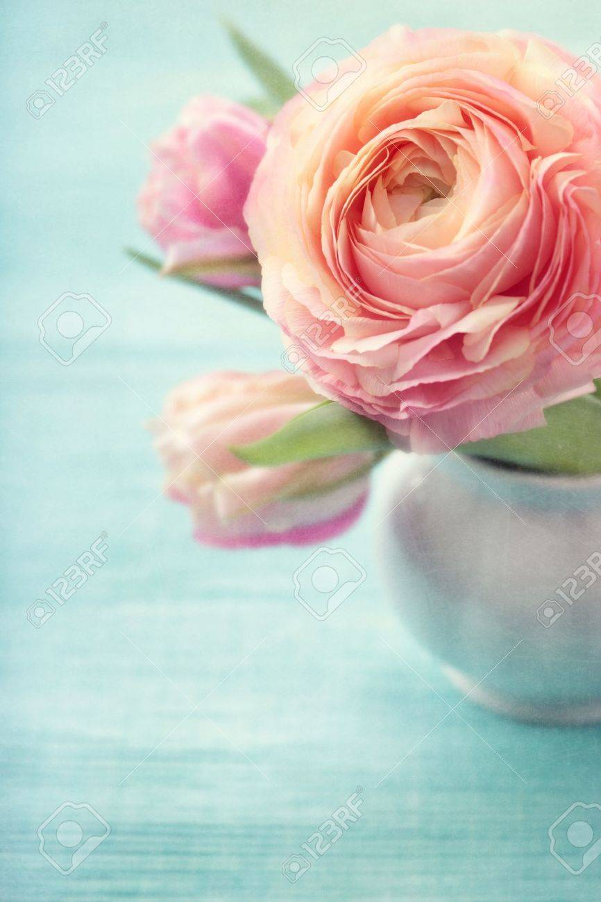 Pink flowers in a vase Stock Photo - 12879084