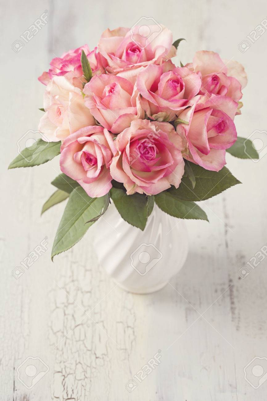 Pink Roses In A White Vase Stock Photo Picture And Royalty Free Image Image 55678038