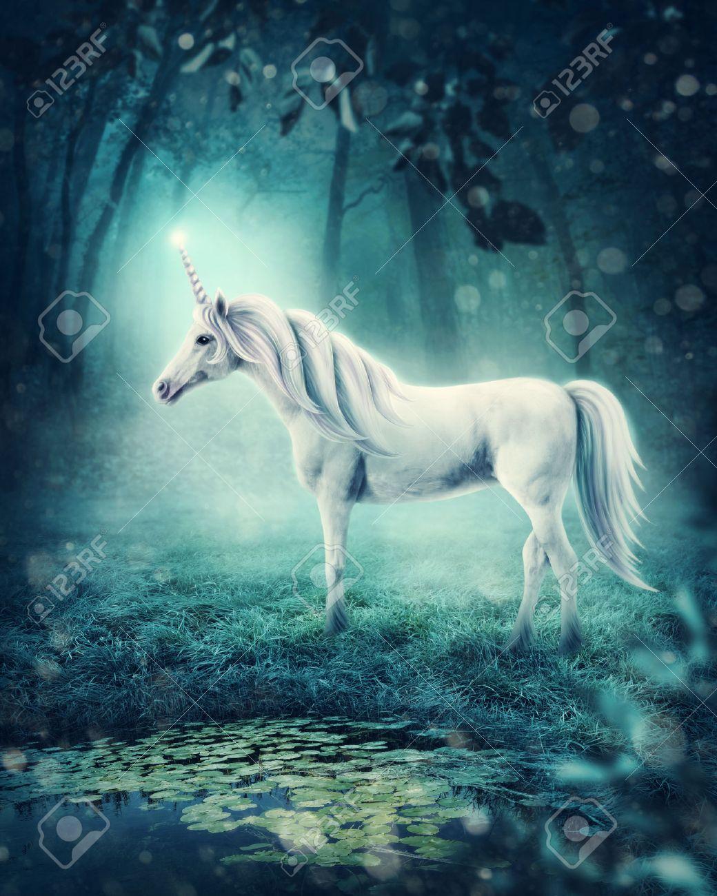 White unicorn in a dark forest - 74343836