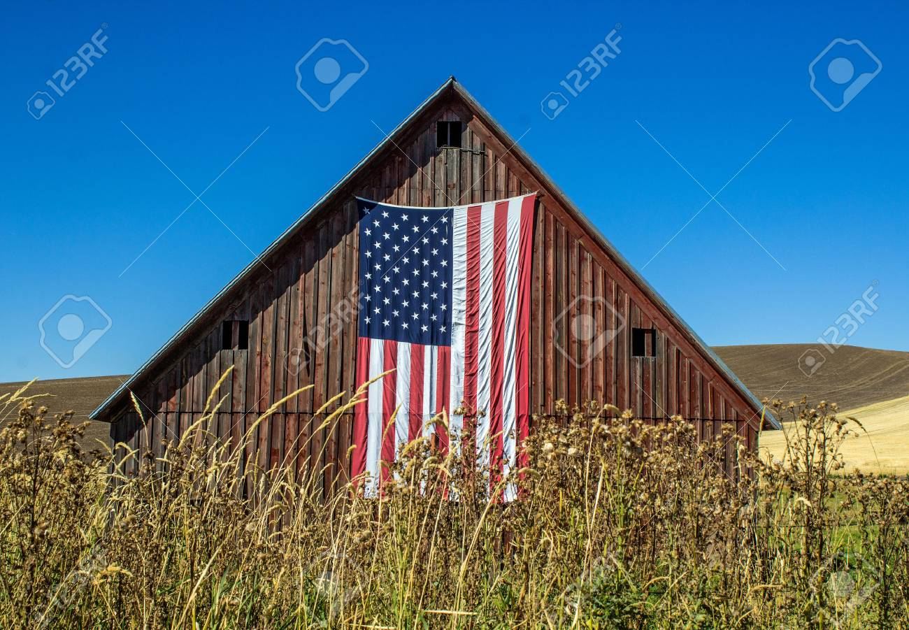 Weathered Red Barn with American Flag in a wheat field against a bright blue sky - 88094803