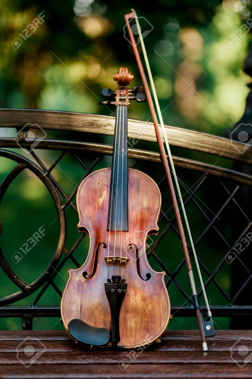 Violin music instrument of orchestra  Violins in the park on